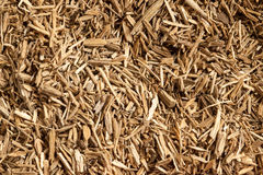 Granelli o polvere resinosi di Agarwood (malaccensis di Aquilaria) Fotografia Stock Libera da Diritti