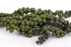 Granello di pepe verde e nero Fotografia Stock