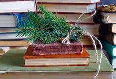 Granen fattar bundet upp med det gamla repet på bunten av gamla tappningböcker fotografering för bildbyråer