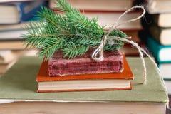 Granen fattar bundet upp med det gamla repet på bunten av gamla tappningböcker royaltyfria foton