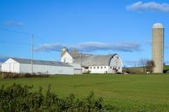 Granero blanco con Silo en el campo de Wisconsin imagen de archivo libre de regalías
