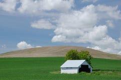 Granero blanco en tierras de labrantío verdes Fotos de archivo