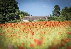 Granero de la piedra de Cotswold y campo rojo de la amapola Imagen de archivo libre de regalías
