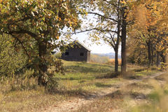 Granero de madera abandonado en campo cerca del bosque en otoño imagenes de archivo