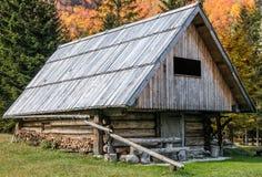 Granero de madera alpestre en el bosque. Imágenes de archivo libres de regalías