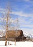 Granero del Mouton en el parque nacional de Teton Foto de archivo