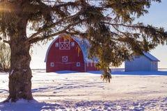 Granero del país en nieve Fotografía de archivo