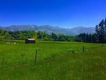 Granero en Nueva Zelanda Fotos de archivo libres de regalías