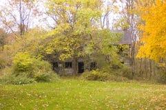 Granero Overgrown foto de archivo