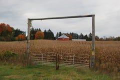 Granero redondo en un campo de maíz foto de archivo libre de regalías