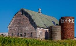 Granero resistido, silos, campo de maíz Foto de archivo