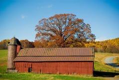 Granero rojo con el árbol del otoño Imágenes de archivo libres de regalías