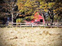 Granero rojo con el caballo Imagen de archivo libre de regalías