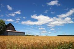 Granero rojo de Oregon Imagen de archivo libre de regalías