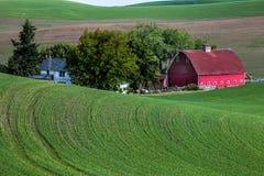Granero rojo en campo verde imagen de archivo