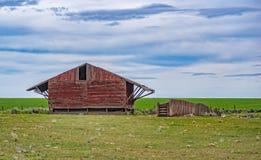Granero rojo en un campo verde Imagen de archivo libre de regalías