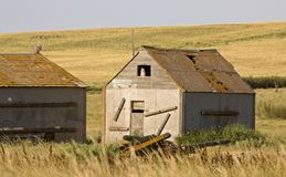 Granero Saskatchewan de la pradera Imágenes de archivo libres de regalías