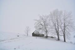 Granero tradicional rumano situado detrás de algunos árboles por completo de la nieve en temporada de otoño Imagen de archivo libre de regalías