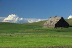 Granero viejo en campo de trigo Imagenes de archivo