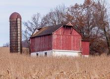 Granero viejo y silo rojos rodeados por el maíz foto de archivo libre de regalías