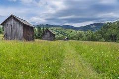 Graneros de madera en un prado floreciente Fotos de archivo