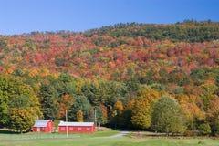 Graneros rojos en otoño Imagen de archivo libre de regalías