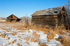 Graneros viejos abandonados en último invierno foto de archivo