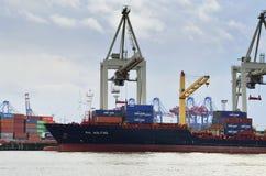 Cranes unloaded the cargo ship in Hamburg port Royalty Free Stock Photos