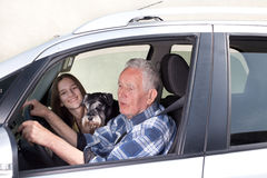 Granfather, grandchild and dog in car royalty free stock image