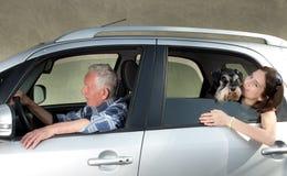 Granfather, nieto y perro en coche Fotografía de archivo libre de regalías