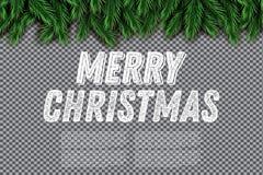 Granfilial på genomskinlig bakgrund glad jul vektor illustrationer