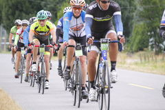 2014 GranFondo Cycling Race Royalty Free Stock Image