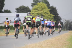 2014 GranFondo Cycling Race Stock Image