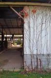 Grange abandonnée Photos libres de droits