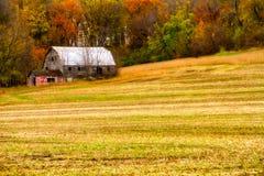 Grange abandonnée en automne Images libres de droits