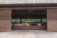 Grange animale Photos stock