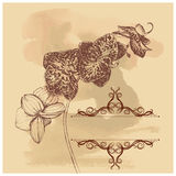Grange background with frame and orchid. Vintage grange background with frame and orchid with sketch style for design Royalty Free Stock Photo