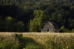 Grange dans l'automne Photographie stock libre de droits