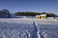 Grange dans l'horizontal neigeux photographie stock