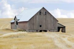 Grange dans le domaine de blé images stock