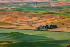Grange dans le wheatland Photographie stock