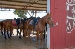 Grange de cheval Images libres de droits