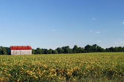 Grange du Maryland photos libres de droits