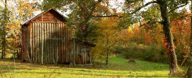 Grange en bois de tabac avec la couleur d'automne Image stock