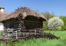 Grange en bois près de bel arbre fleurissant Image libre de droits