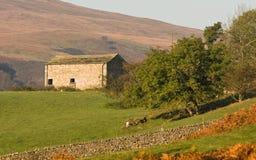 Grange en vallées de Yorkshire Images stock
