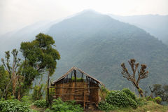 Grange et montagnes brumeuses au Népal Photos libres de droits