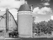 Grange et silo de deux chevaux Photo stock