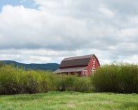 Grange jetant un coup d'oeil par des buissons Photo libre de droits