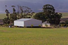 Grange plaquée en acier de ferme avec des arbres d'eucalyptus derrière Photo libre de droits